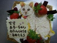 イラストのケーキ9